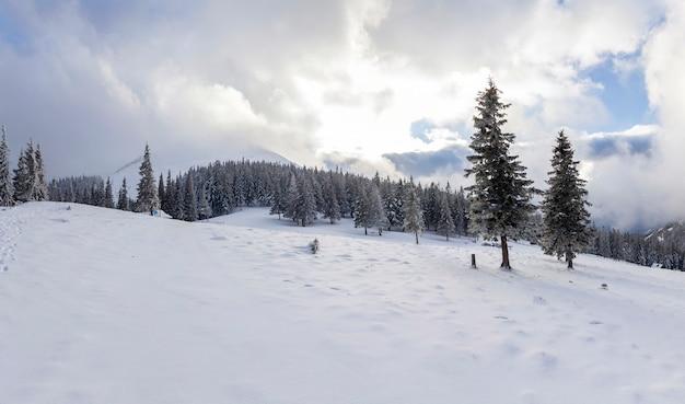 Bela paisagem montanhosa de inverno. pinheiros altos cobertos de neve e geada no céu azul brilhante com nuvens brancas e fundo de espaço de cópia de montanha distante. feliz ano novo e feliz natal.