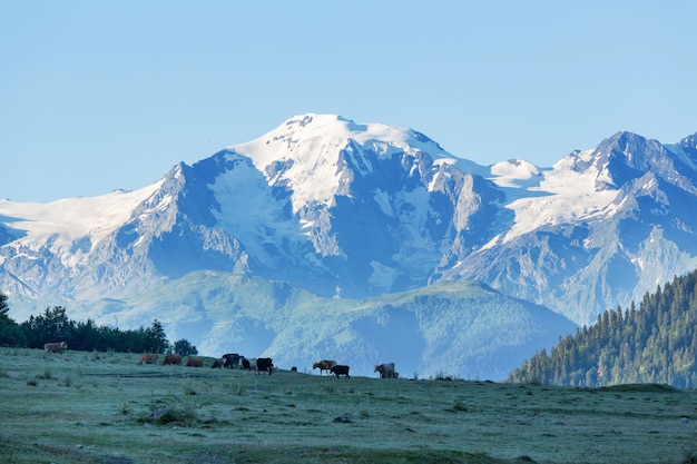 Bela paisagem montanhosa de svaneti, geórgia.