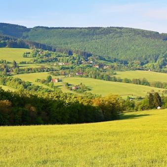 Bela paisagem nas montanhas no verão. república checa - os cárpatos brancos - europa.