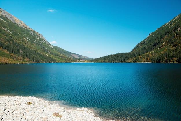 Bela paisagem natural de lago de montanha cercado por florestas verdes de coníferas