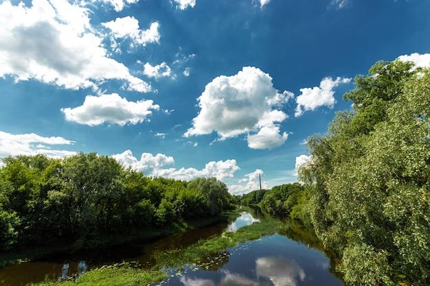 Bela paisagem natural no verão. feriados