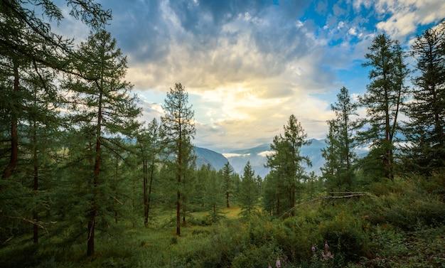 Bela paisagem no caminho para a passagem de katu yaryk, altai, rússia. foto de alta qualidade