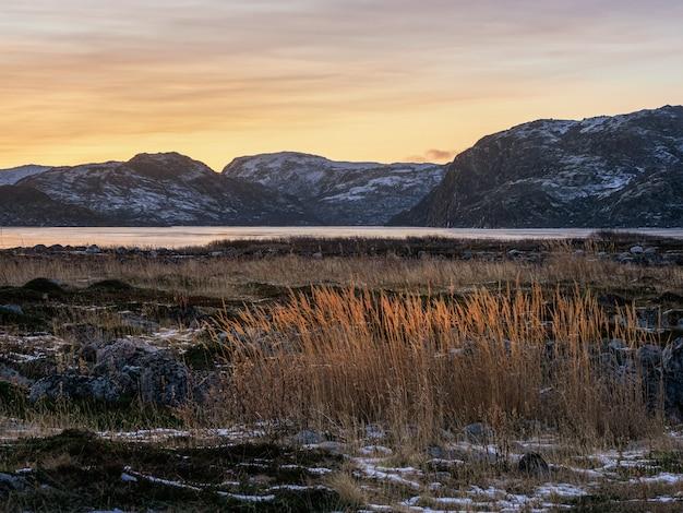 Bela paisagem polar ao pôr do sol com grama vermelha na tundra gelada
