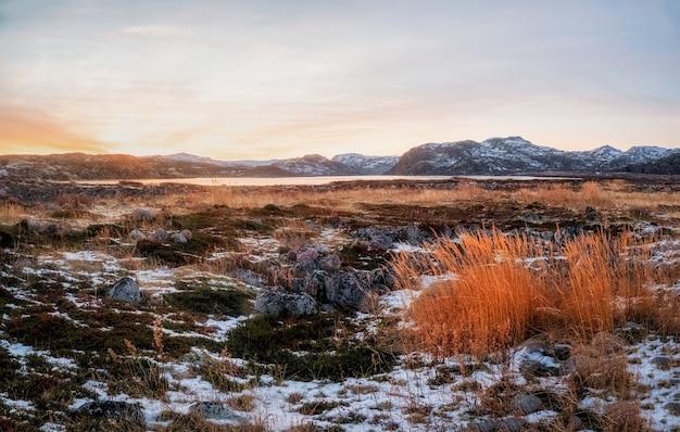 Bela paisagem polar do sol com grama vermelha na tundra gelada. península de kola.