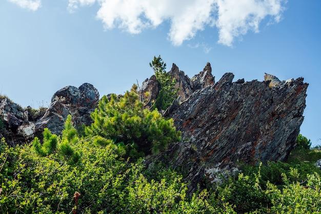 Bela pedra grande com musgos e líquenes entre uma rica vegetação sob um céu azul com grandes nuvens. fundo de natureza cênica com grande rocha afiada entre uma vegetação exuberante. pedra pontiaguda entre gramíneas vivas.