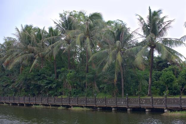 Bela ponte de madeira sobre o rio na china tropical