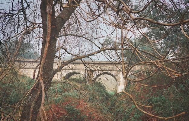 Bela ponte mística com nevoeiro no outono