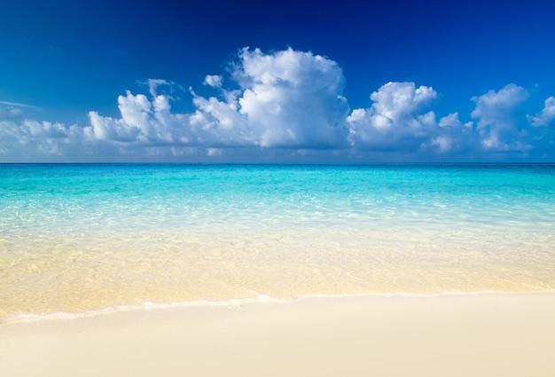 Bela praia azul do mar caribenho