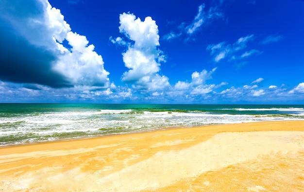 Bela praia com árvores e céu no verão.