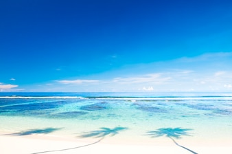 Bela praia com céu azul