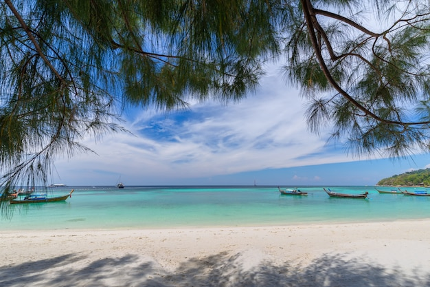 Bela praia de areia branca com palmeiras na ilha de lipe, tailândia