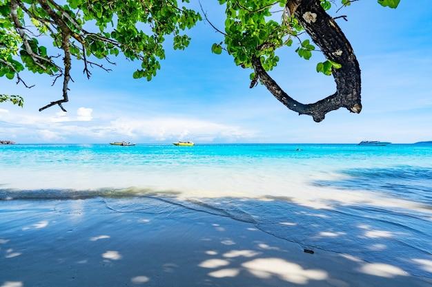 Bela praia de areia com ondas quebrando na costa arenosa em ilhas similan belo mar tropical ilha similan no.4 no parque nacional similan, phang nga tailândia.