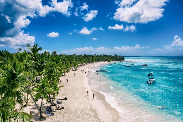 Bela praia do caribe na ilha de saona, república dominicana. vista aérea de uma idílica paisagem tropical de verão com palmeiras verdes, costa marítima e areia branca