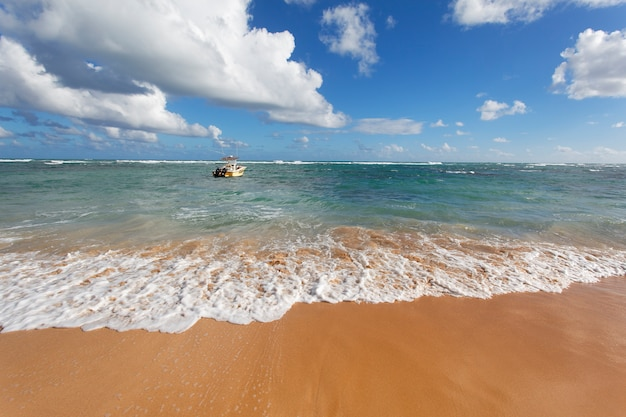 Bela praia do caribe