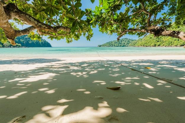 Bela praia exótica com galho de árvore para relaxamento localizado ilha surin, tailândia