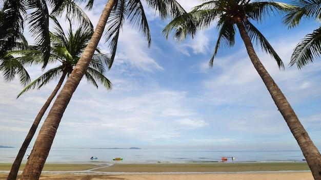 Bela praia tropical com palmeiras e céu azul.