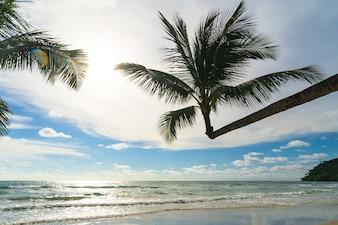 Bela praia tropical e mar com palmeira de coco sob o céu azul