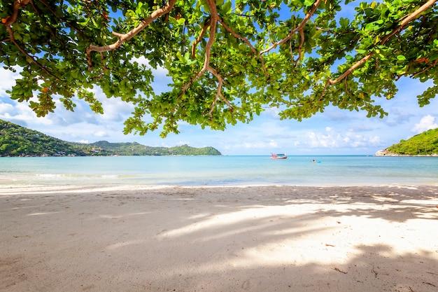 Bela praia tropical incrível, areia branca, céu azul com nuvens e reflexo das árvores