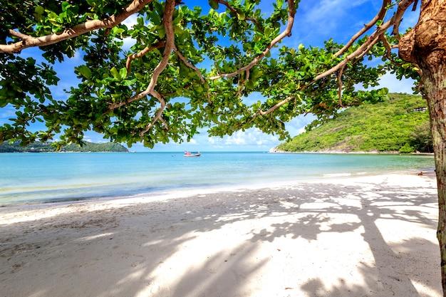 Bela praia tropical incrível incrível, areia branca, céu azul com nuvens e reflexão