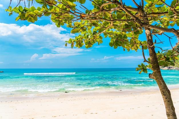 Bela praia tropical, mar, oceano, com coco e outras árvores ao redor de uma nuvem branca no céu azul