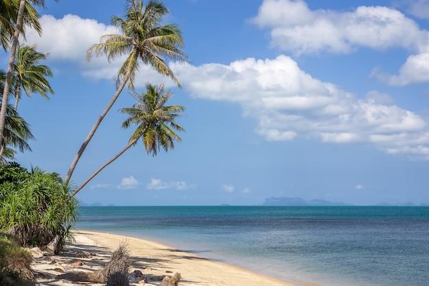 Bela praia tropical selvagem, vista para a ilha, tailândia