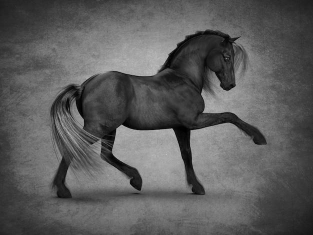 Bela renderização 3d do cavalo preto