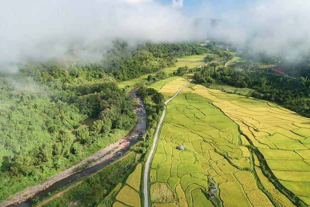 Bela vista aérea do arrozal no distrito de bo kluea. uma pequena vila situada em um vale florestal do norte de ar puro e rios cristalinos na província de nan da tailândia. vista incrível do drone.