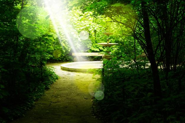 Bela vista da antiga fonte no parque verde