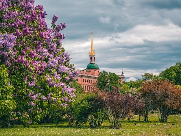 Bela vista da cidade de verão com lilases em flor