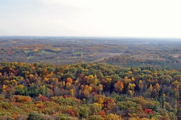 Bela vista da floresta estacional decidual
