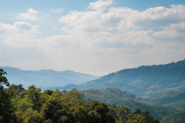 Bela vista da floresta tropical da montanha