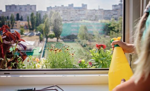 Bela vista da janela com flores desabrochando na varanda jardim natureza e ecologia em casa