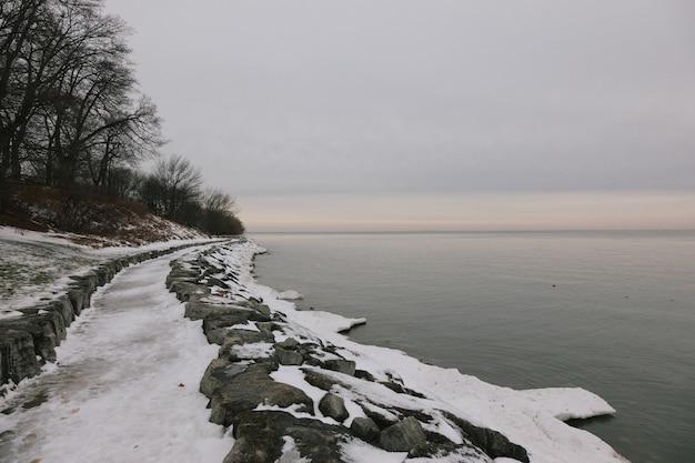 Bela vista da neve e das árvores na costa perto do lago calmo