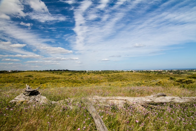Bela vista da paisagem rural da região do algarve.