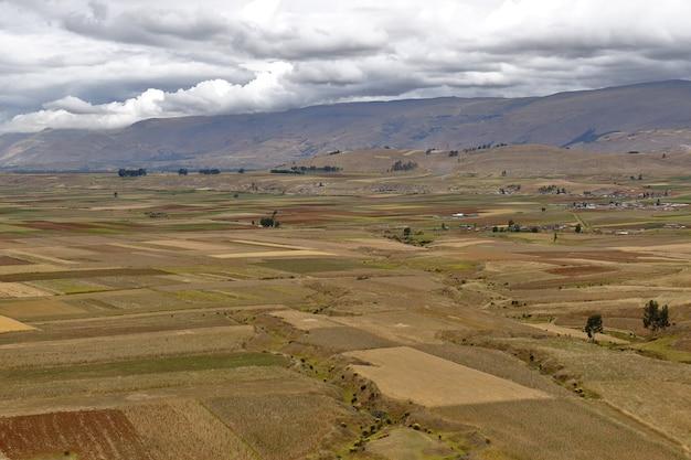 Bela vista das extensas safras agrícolas de orcotuna na estação seca