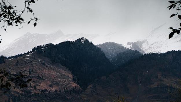 Bela vista das montanhas cobertas de neve e florestas