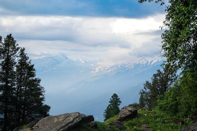 Bela vista das montanhas com árvores em primeiro plano