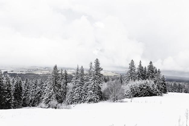 Bela vista das montanhas nevadas em um dia de nevoeiro