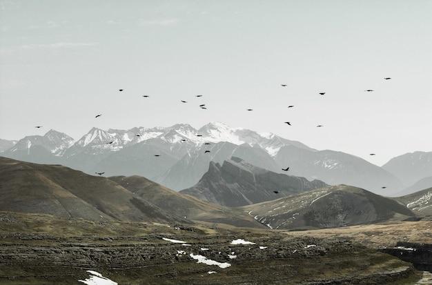 Bela vista de pássaros voando sobre montanhas em um dia sombrio