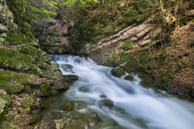 Bela vista de um riacho fluindo através das rochas cobertas de musgo - perfeito para papel de parede