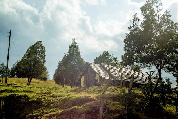 Bela vista de uma casa rústica na floresta