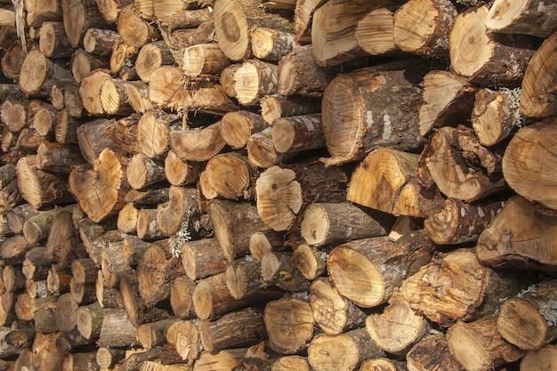 Bela vista de uma pilha de toras de madeira, cortadas e prontas para serem usadas capturadas à luz do dia