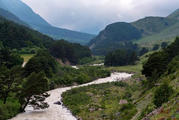 Bela vista do estreito rio da montanha no verão Foto Premium