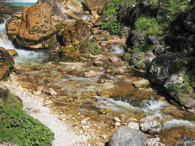Bela vista do galho da árvore no fundo do riacho de água com pedras e rochas