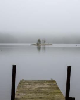 Bela vista do lago cercado por vegetação em dia de nevoeiro