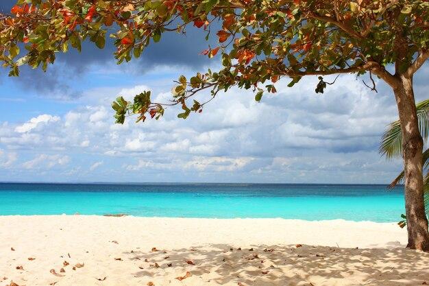Bela vista do mar azul