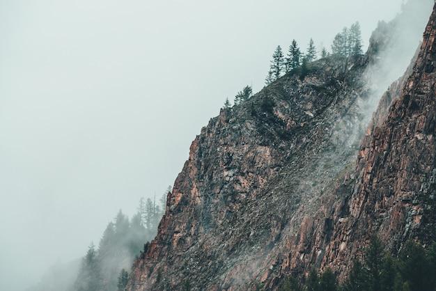 Bela vista dramática para uma montanha rochosa com árvores coníferas em meio a uma névoa densa