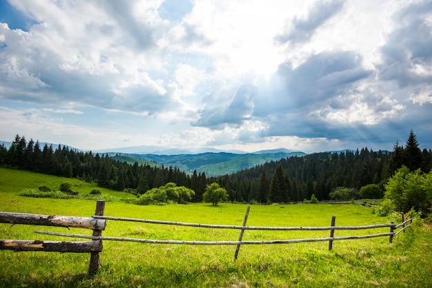 Bela vista panorâmica de prados verdes de prados verdes