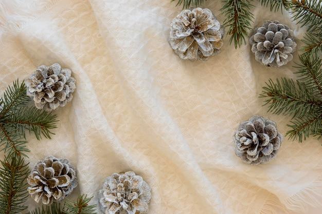 Bela vista superior das pinhas de inverno
