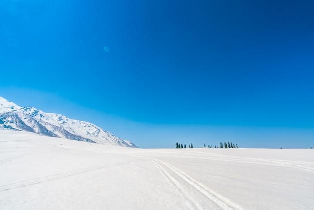 Belas montanhas cobertas de neve, estado da caxemira, índia.